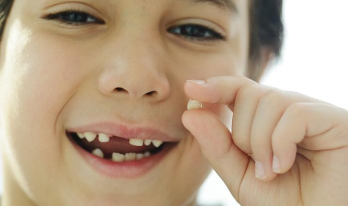 Раньше молочный зубик отдавали мышке, а теперь Зубной фее