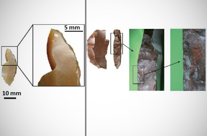 Одно из каменных изделий с притупленной спинкой, которое имеет ударный слом (слева) и органические остатки на одном из микролитов с притупленной спинкой / Источник: tohoku.ac.jp