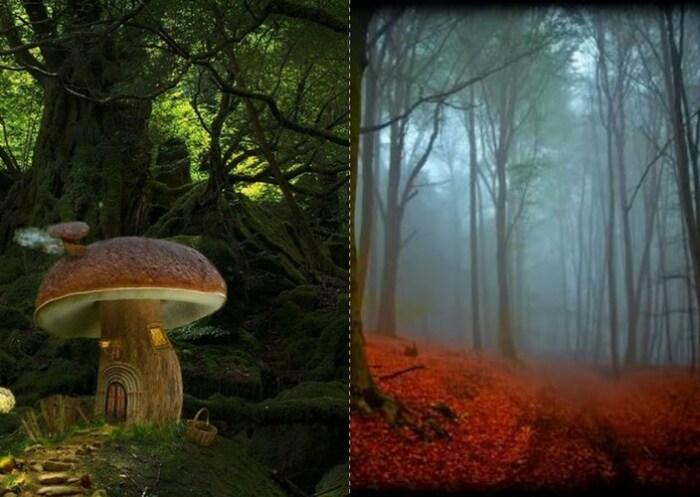 Шварцвальдский лес представляли сказочным и мистическим местом