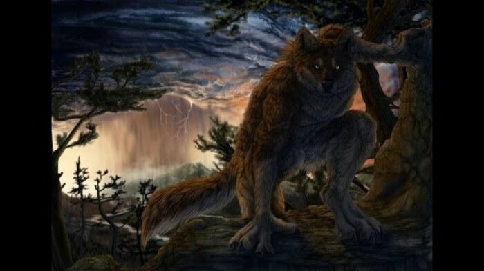 Не волка описали братья Гримм, а оборотня. / Фото:artfile.ru
