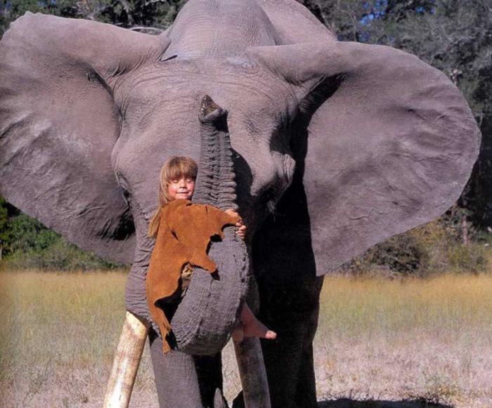 Слон как лучший друг / Фото: www.drive2.ru