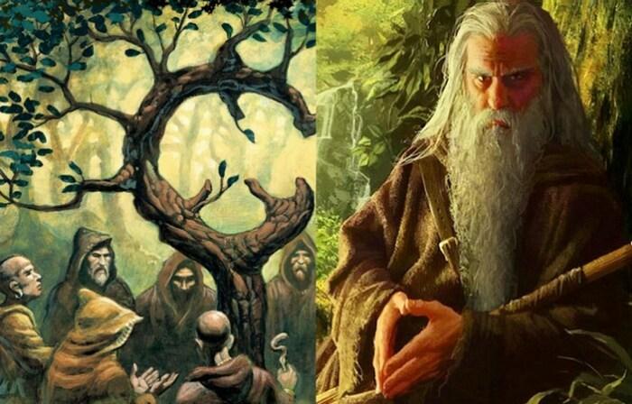 Главной святыней друидов был дуб