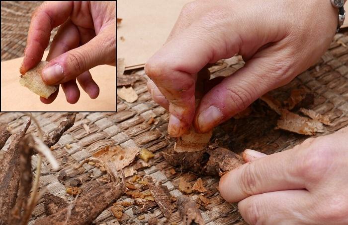 Примерно так мелкими резцами из кварцита первобытные люди из пещеры Кесем нарезали корнеплоды / Источник: was.media.com