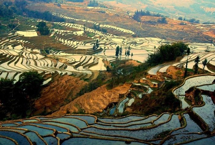 Рисовые террасы Хунхэ-Хани, Юаньян, Китай / Фото: http://udivitelno.com/