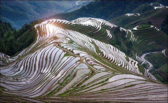 Рисовые террасы «Драконий хребет» / Фото: 35photo.pro