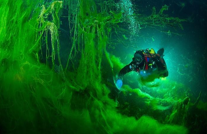 Озеро Церик-Кель нельзя назвать полностью мертвым / Источник: goodhotels.ru