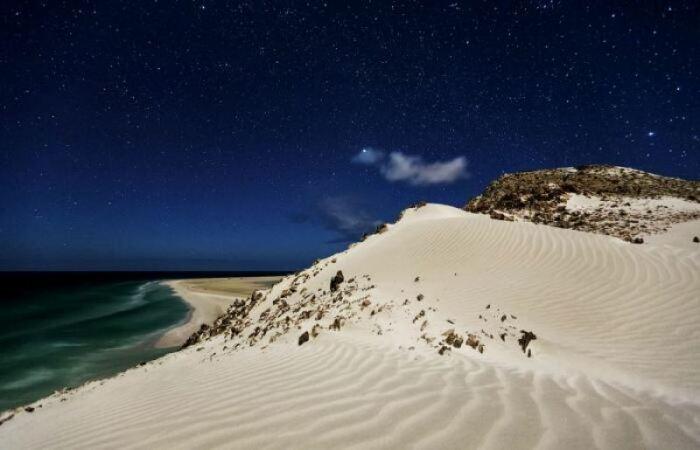 Красоты острова Сокотра. / Фото: limonos.ru