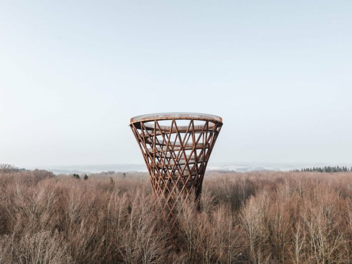 Башня Camp Adventures Forest Tower в Дании / Фото: pozitiv.guru