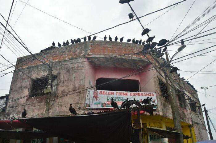 Наводящие страх ну туристов достопримечательности города Икитос. / Фото:  motohorek.life