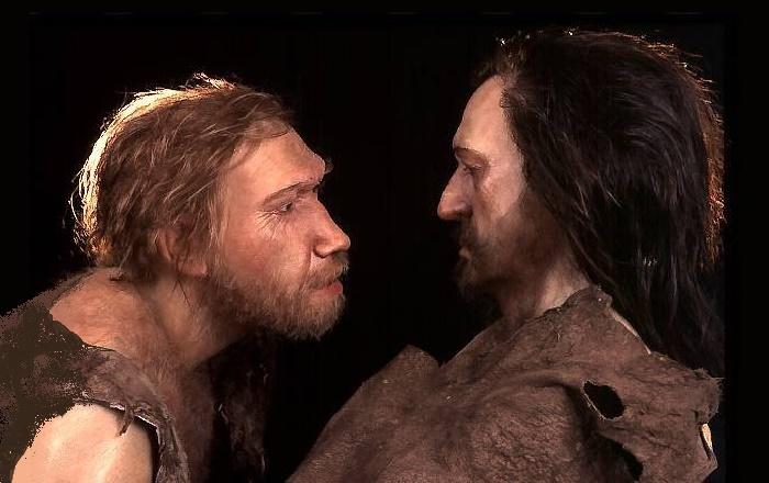 Неандертальцы жили рядом с homo sapiens на протяжении 5 тысяч лет / Источник: hi-news.ru
