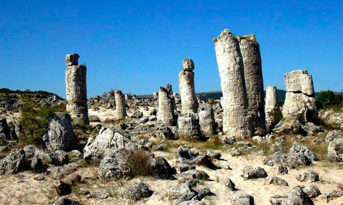 Каменный лес Варны состоит из стволов разного размера. / Фото: bulgarianavsegda.com
