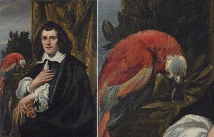 Якоб Йорданс «Портрет молодого человека с попугаем» (1656)