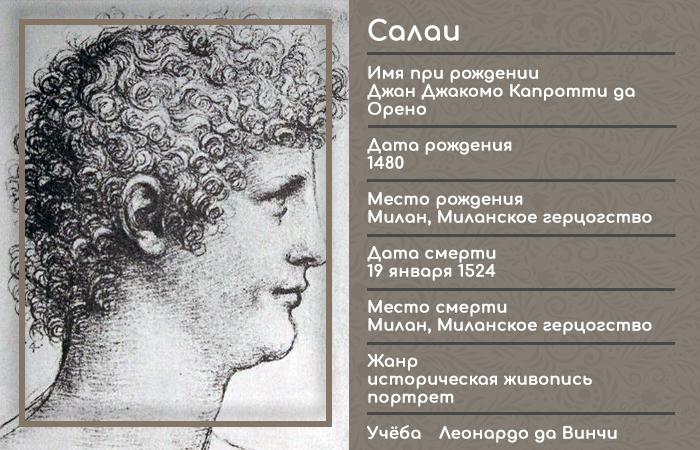 Инфографика: Салаи (ученик Леонардо)