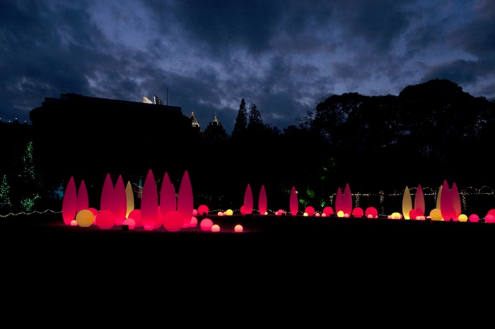 Инсталляция Lights, Holiday Nights в Ботаническом саде Атланты