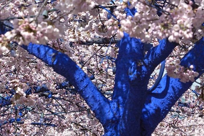 Инсталляция Blue Trees от Константина Димопулоса (Konstantin Dimopoulos)