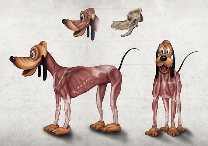 Inhuman Anatomy – анатомический атлас персонажей студии Disney