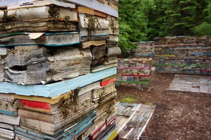 Возвращение книг в природу от Родни ЛаТуреля (Rodney LaTourelle) и Тило Фолкертса (Thilo Folkerts)