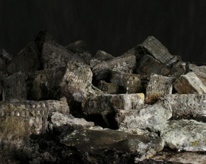 Расцвет и падение хлебного города от Йоханны Мартенссон (Johanna Martensson)