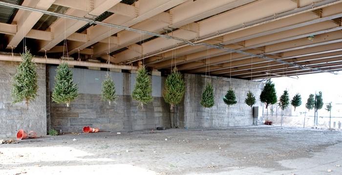 Призраки Рождества. Елочная инсталляция от Майкла Неффа (Michael Neff)