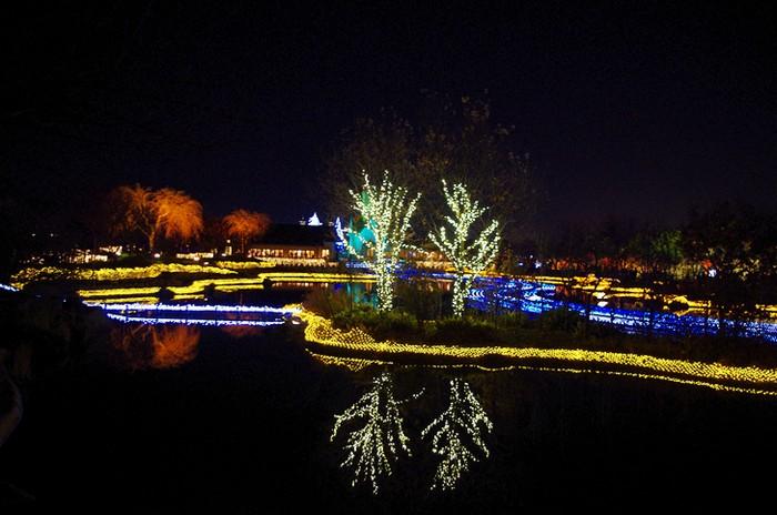 Световое шоу в ботаничестком саду Nabana no Sato в японском городе Кувана