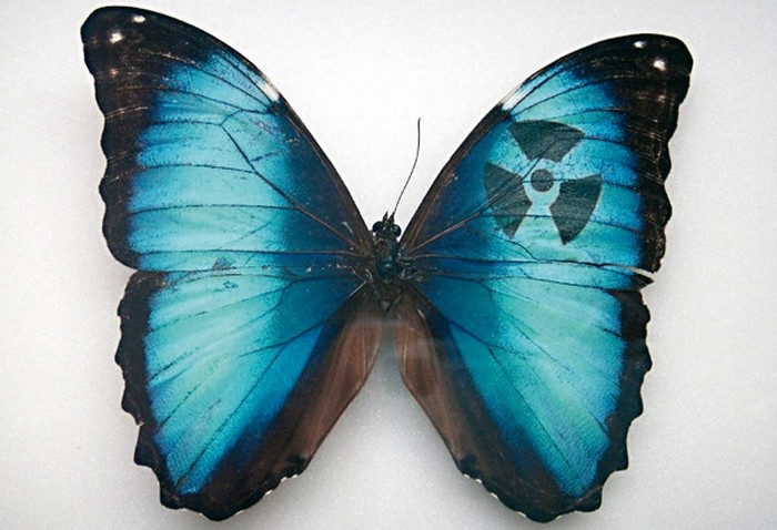 Mimesis – бабочки на принтере от Сары Гарцони (Sarah Garzoni)