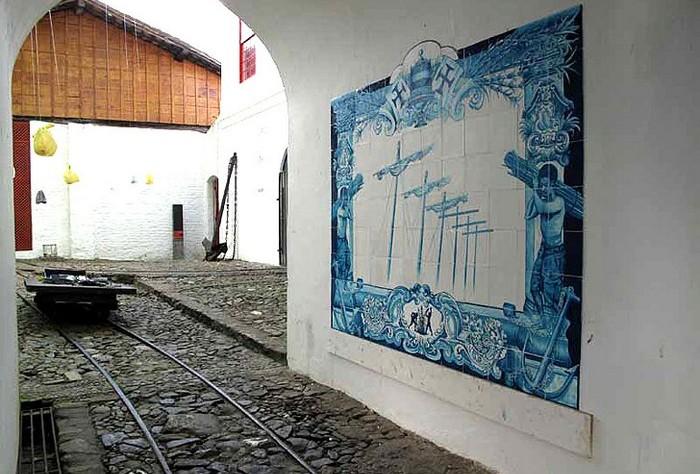 Сахарные граффити от Шелли Миллер (Shelley Miller)