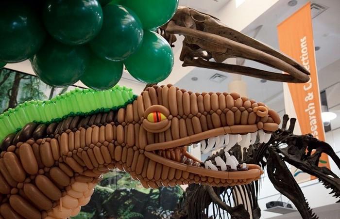 Acrocanthosaurus – надувной динозавр в музее естественной истории