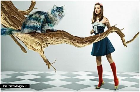 Алиса в стиле яппи