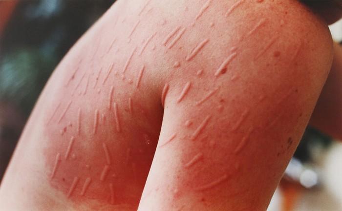 Живопись под прессом. Орнаменты на коже от Арианы Рассел (Ariana ...