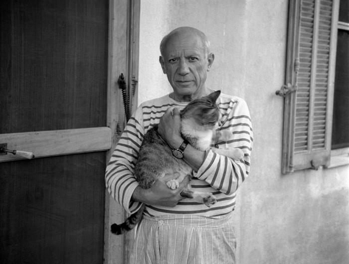 Пабло Пикассо и его кошка. Проект The Untamed Species