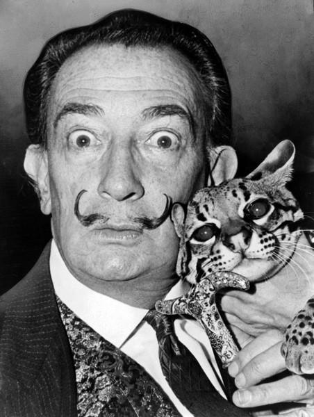 Сальвадор Дали и его кошка. Проект The Untamed Species