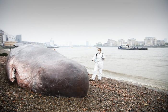 Кит на берегу – гиперреалистичная инсталляция в Лондоне от Captain Boomer