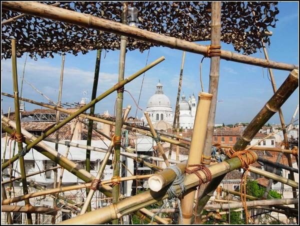 Большой бамбук на Венецианской биеннале