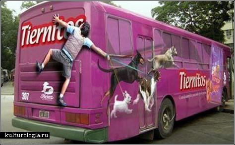 Такие креативные автобусы