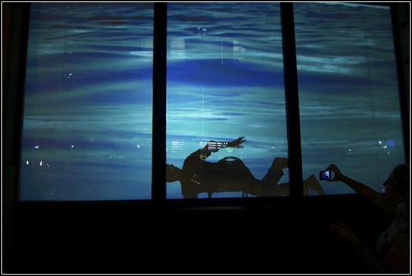 DUMBO Underwater - проект, посвященный поднятию уровня Мирового океана