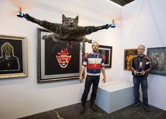 Летающий кот Orvillecopter – новое слово в таксидермии