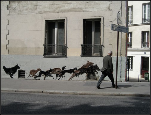 Долой шубы! Вернуть животных на улицы!