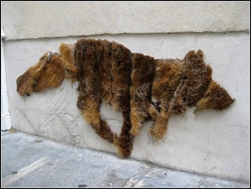 Долой шубы вернуть животных на улицы
