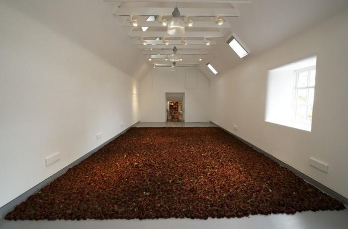 История любви в цветочной инсталляции Red on Green от Ани Галлаччио (Anya Gallaccio)