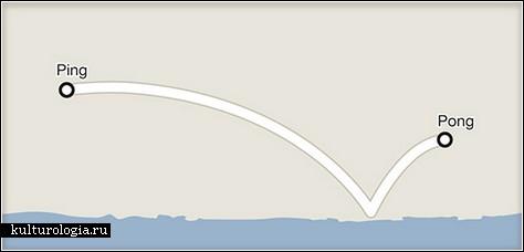 Google Maps юмор
