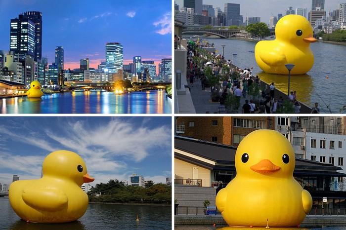 Giant Rubber Duck – подарок  жителям Сиднея от художника-гигантомана Флорентина Хофмана (Florentijn Hofman)