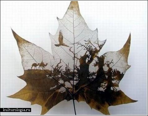 Невероятные картины на платановых листьях
