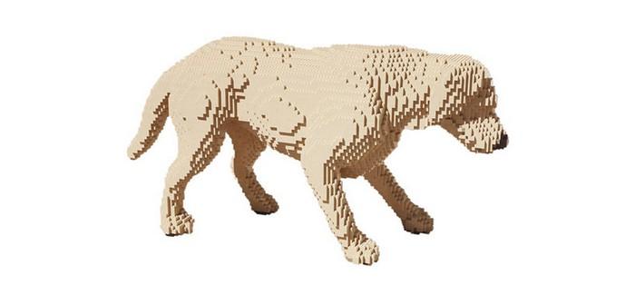 LEGO-тест на внимательность от Натана Савайи (Nathan Sawaya)