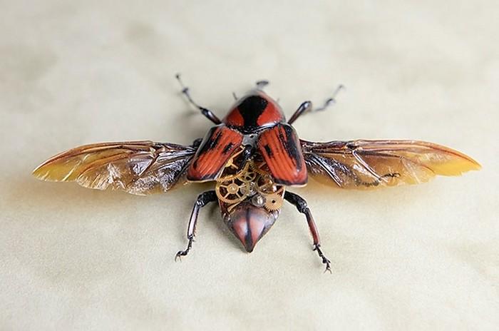 Стимпанковые жучки и паучки от Линси Бессанон (Lindsey Bessanon)