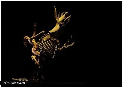 MOMIX – танцы от иллюзионистов