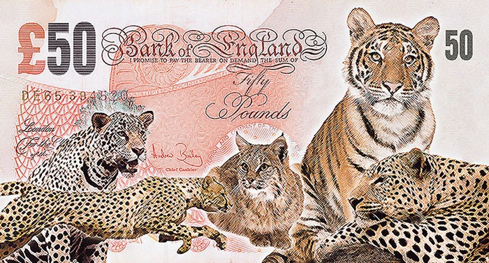 Пять зверей на грани исчезновения от John Gray
