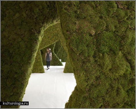 Архитектурная инсталляция с «зеленым» намеком