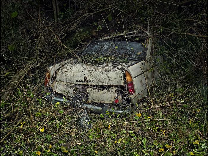 Paradise Parking – буйство природы по отношению к автомобилям