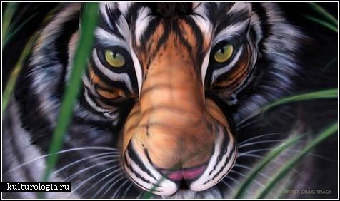 Китайский тигр из трех обнаженных тел