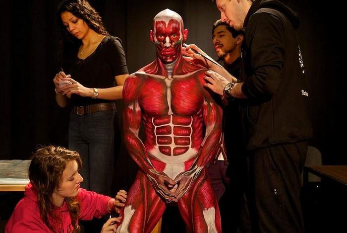 Живой анатомический атлас от студентов из Мельбурна
